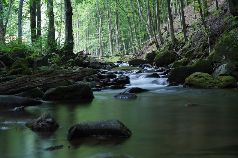 Šipot creek – beautiful Uzh tributary.