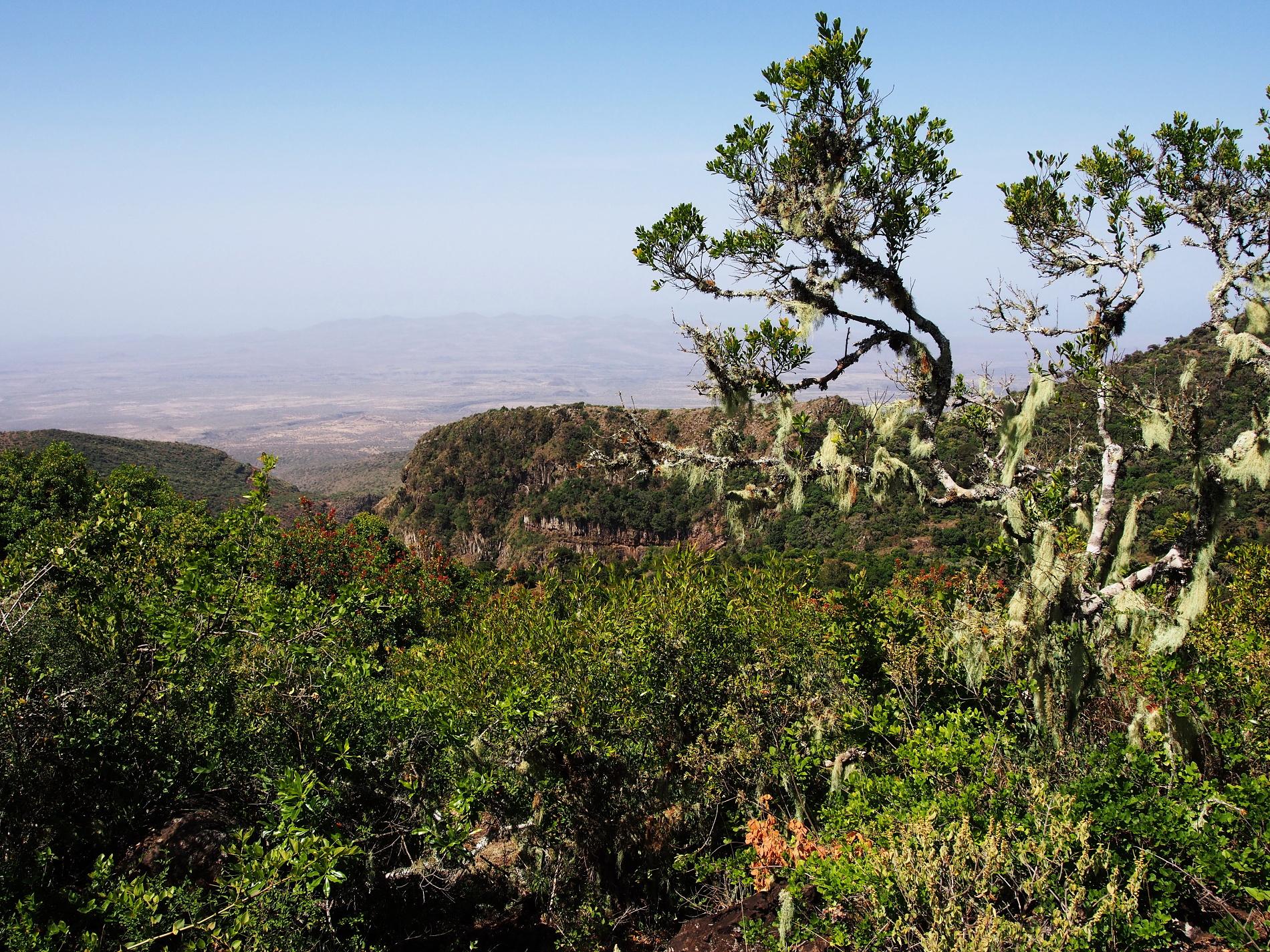 Pohľad z chrbta horského masívu ponúka výhľad na široko otvorený priestor suchých spoločenstiev púští a polopúští.