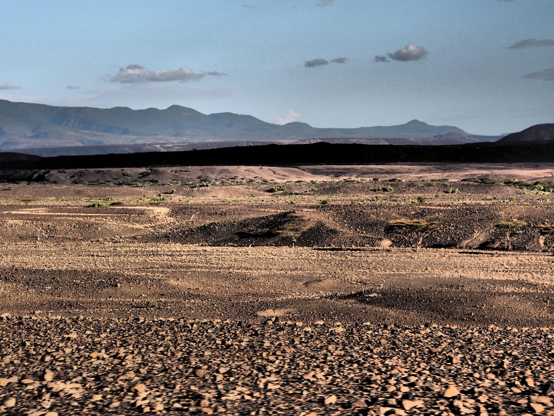 V pozadí sa dvíha horský masív pohoria Mt. Kulal (pohľad od jazera Turkana).